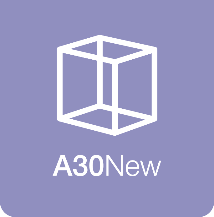 3.A30 New
